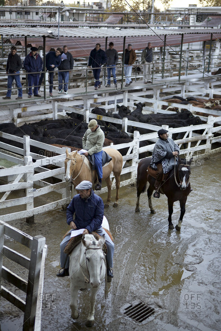 Buenos Aires, Argentina - May 31, 2016: Three gauchos on horses at the corrals in the Mercado de Liniers, Buenos Aires