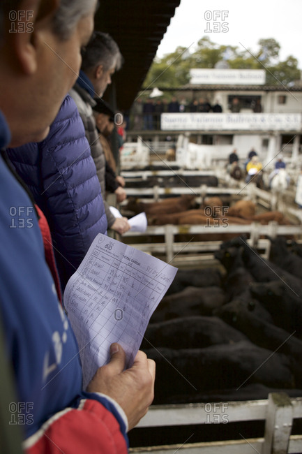 Buenos Aires, Argentina - May 31, 2016: Buyers at the National Cattle Market in Buenos Aires, Argentina