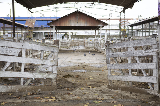 Empty stalls at the Liniers Cattle Market, Buenos Aires