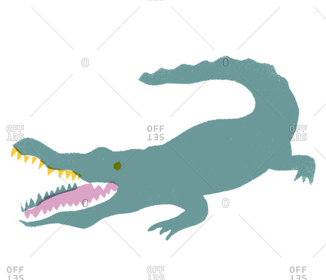 Alligator with open mouth and pointed teeth
