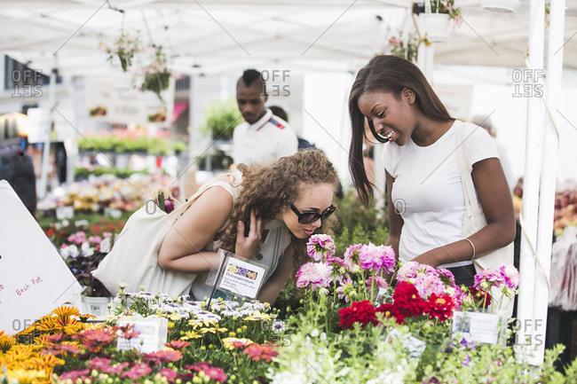Friends smelling flowers in market
