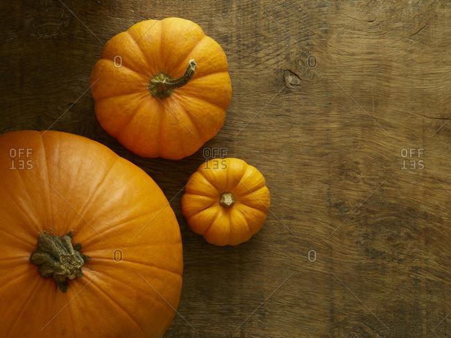 Jack o lantern (Cucurbita pepo) and Jack be little miniature (Cucurbita pepo) pumpkins, still life