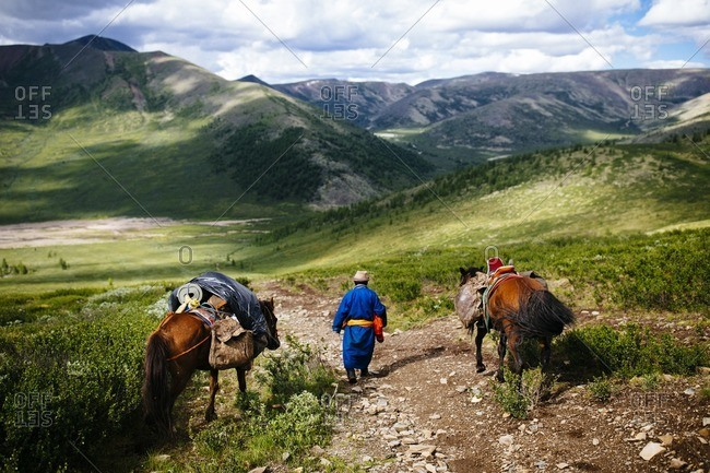 Guide leading horses into the East Taiga forests of northern Mongolia