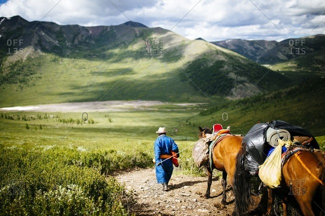 Guide walking with horses into the East Taiga forests of northern Mongolia