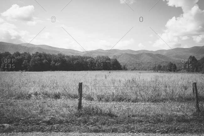 Field in mountains, Tennessee