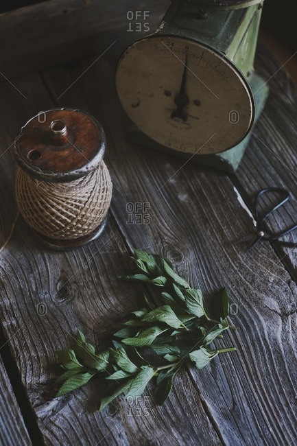 Overhead view of basil leaves with thread spool and kitchen scale on table