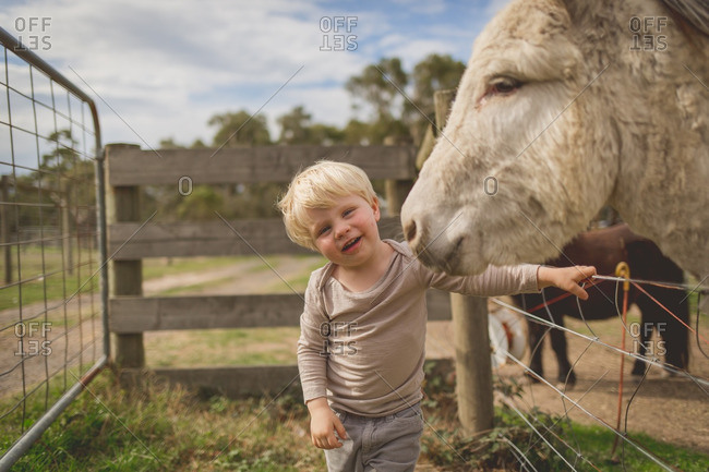 Boy posing happily beside friendly mule or donkey