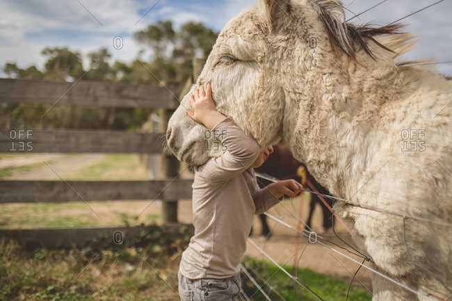 toddler boy embracing content mule or donkey
