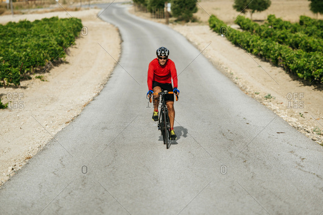 Spain- Andalusia- Jerez de la Frontera- man on a bicycle on a road between vineyards