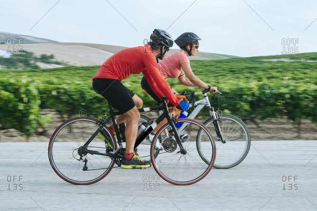 Spain- Andalusia- Jerez de la Frontera- Couple on bicycles on a road between vineyards