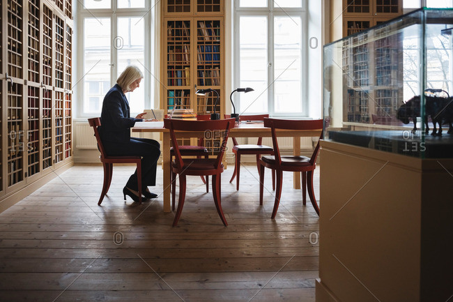 Side view of senior female lawyer reading book in library