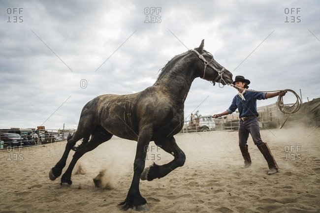 Cowboy training horse in corral