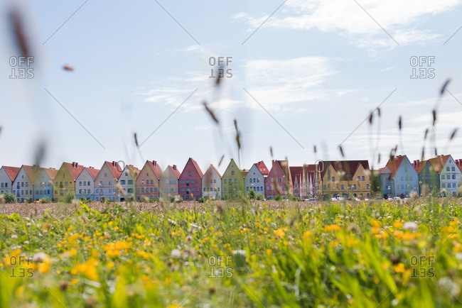 Field with Scandinavian houses in background