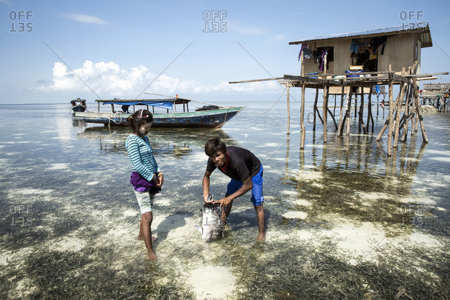 - January 1, 2000: Boy and girl standing in shallow ocean water catching a fish