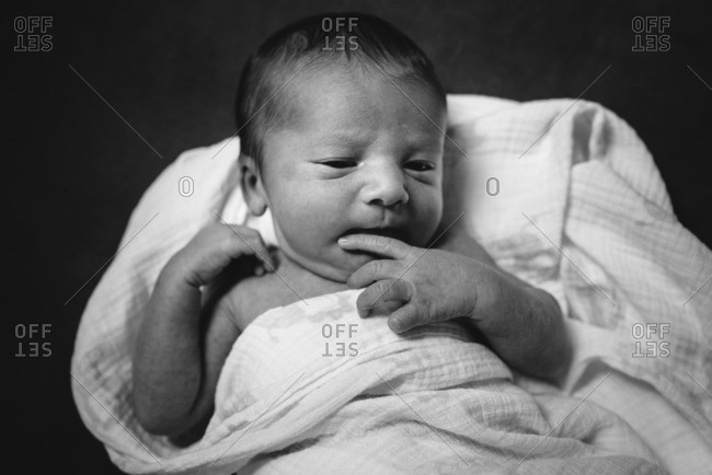 Black and white portrait of a newborn swaddled in a blanket