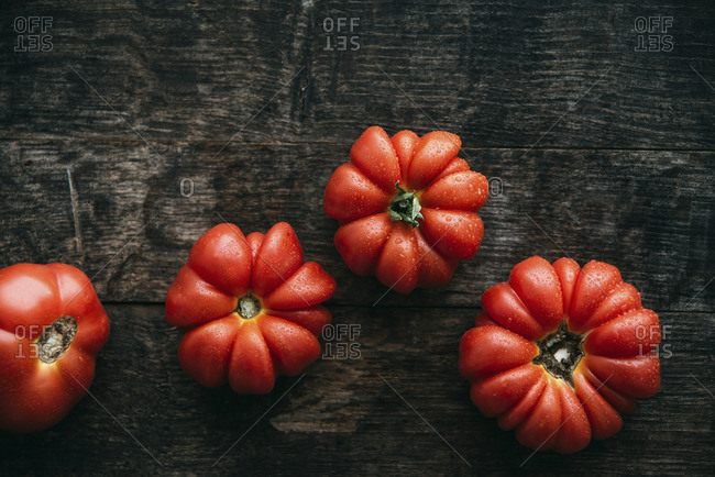 Four homegrown organic oxheart tomatoes on dark wood