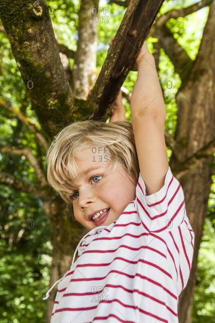 Happy little boy climbing on a tree