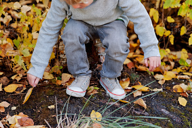 Boy reaching down to pick up a yellow leaf