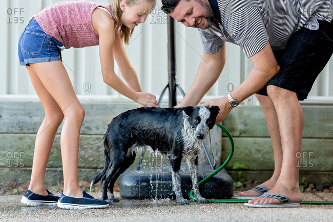 Daughter helps father wash a nervous dog