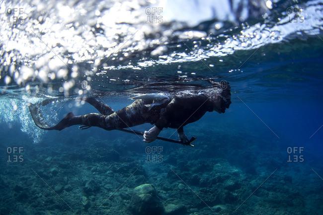 Snorkeler carrying a spearfishing gun
