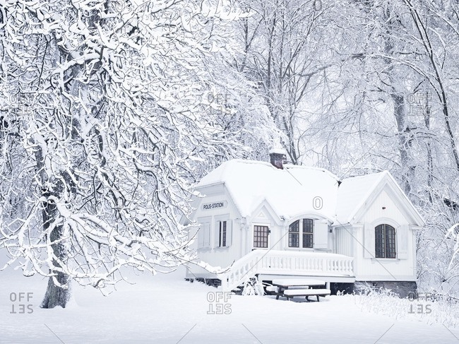 Wooden house at winter