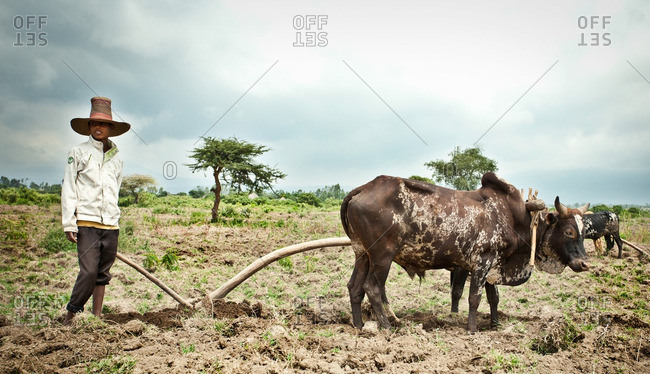 August 24, 2011: Farmer by livestock in Ethiopia