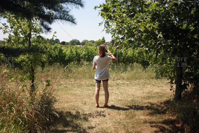 Niagara-on-the-Lake winery tour in Ontario, Canada