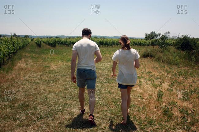 Niagara-on-the-Lake winery tour near Ontario, Canada