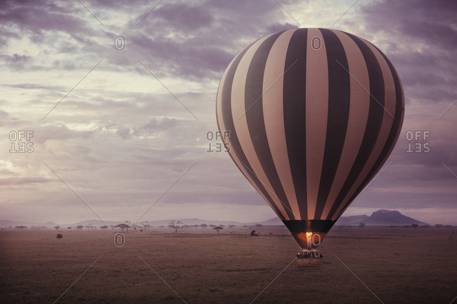 A wide landscape view of the Serengeti at dusk with a large hot air balloon