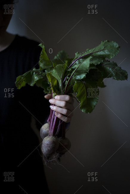A person holding a bunch of fresh beetroot