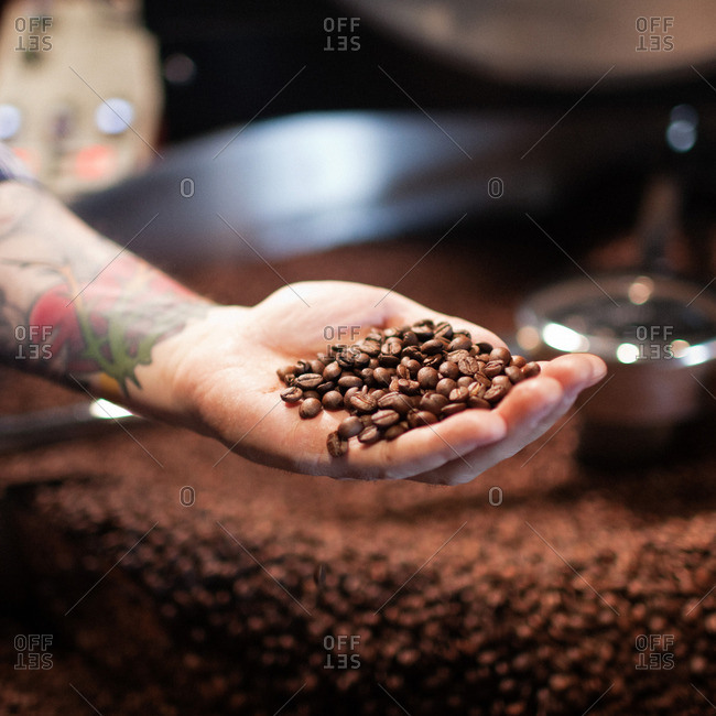 Tattooed hand holding whole coffee beans