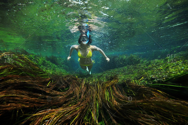Woman scuba diving above seaweed
