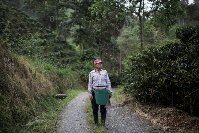 February 10, 2016: A portrait of an older man on a road in a farm after harvesting fresh coffee beans in the rural highlands of Colombia's coffee axis