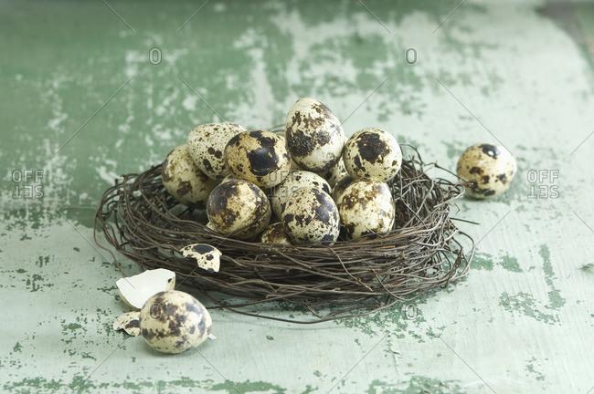 Easter nest of quail eggs