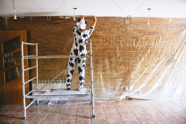 Woman disguised as a cow covering a wall with plastic before painting