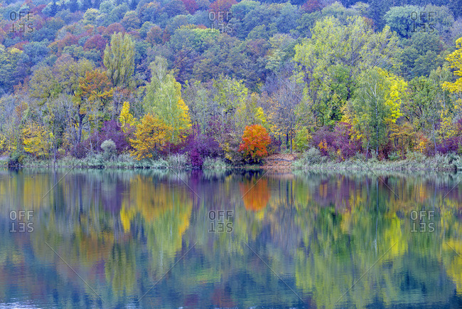 Colorful autumn forest at lake