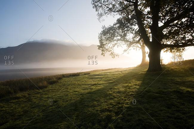 Bassenthwaite Lake, Lake District, Cambria, England