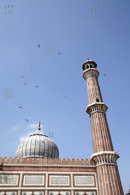 Birds flying around a dome and minaret at the Jama Masjid, Delhi