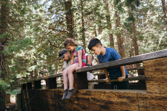 Family gazing over the edge of bridge in forest