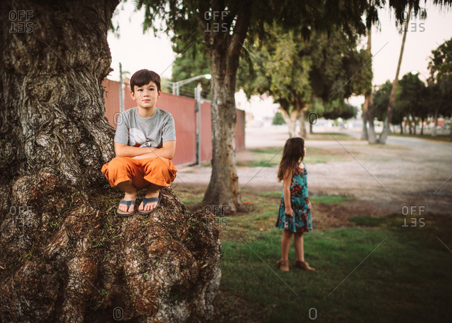 Boy sitting on knot in tree with sister in background
