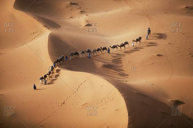 The setting sun over the desert makes a enchanting shadow as a caravan of camel merchants winds their way toward the next stop on their journey.