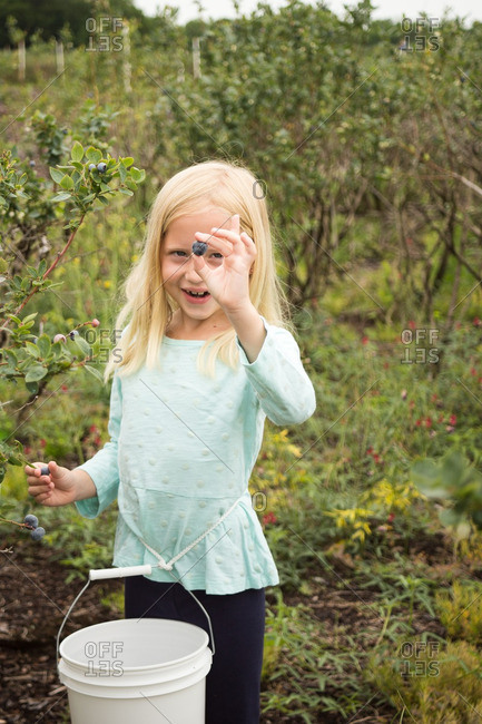 Girl smiling picking blueberries in field