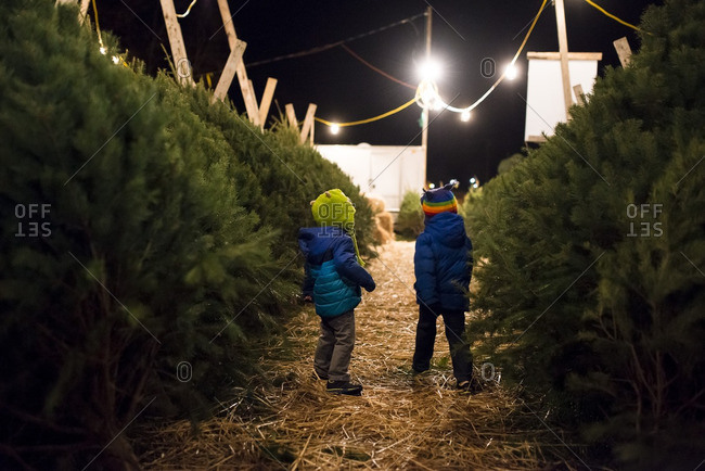 Boys in winter coats and hats at a nighttime outdoor Christmas tree market