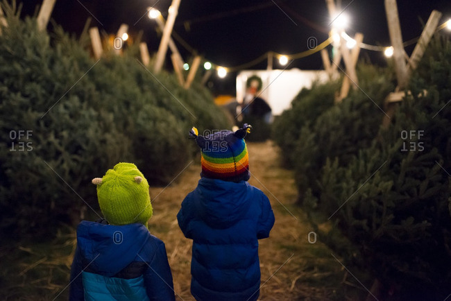 Boys in winter coats and hats at an outdoor Christmas tree market