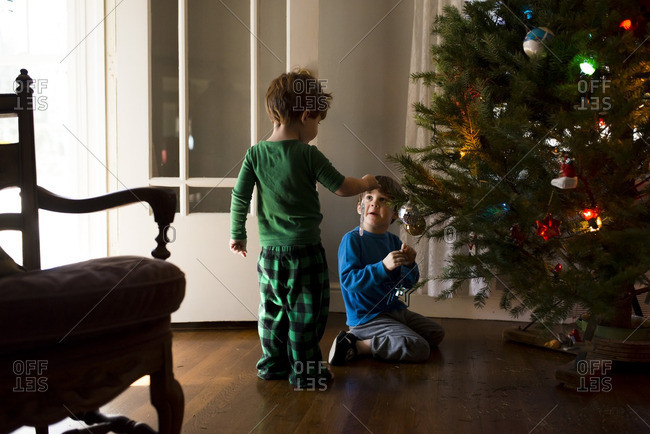 Two boys hanging ornaments on a Christmas tree