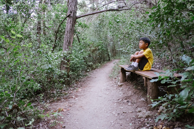 Boy sitting on a wooden bench in the woods