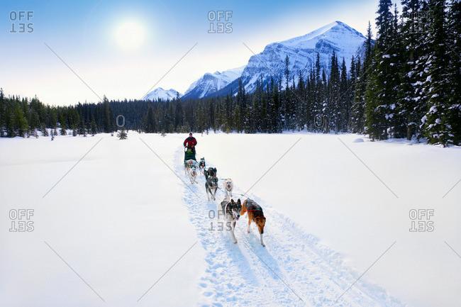 Person having a sleigh ride through the snow