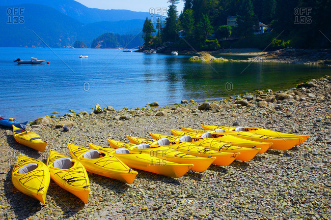 Row of yellow canoes on the beach