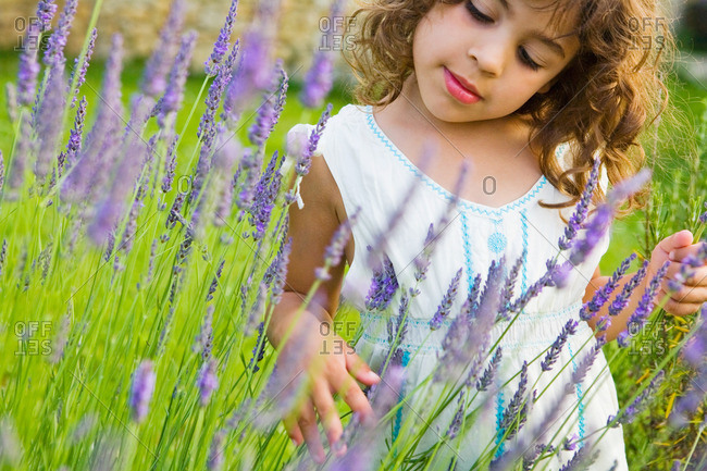 A girl looking at lavender