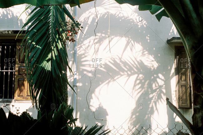 Palm trees cast a shadow on white stucco building